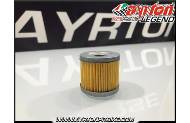 Oil Filter Zs 190 Pitbike