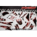 Graphics Pit Bike Xtrema red