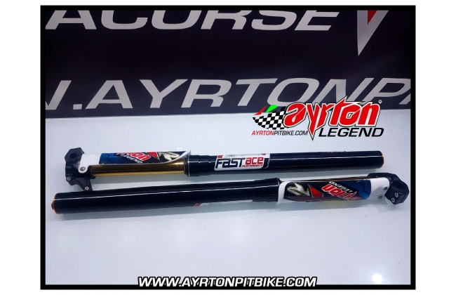 Fastace Factory Forks With Tin Rods