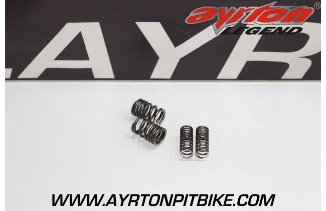 TIMING VALVE SPRINGS FOR PITBIKE ZS190 ENGINE