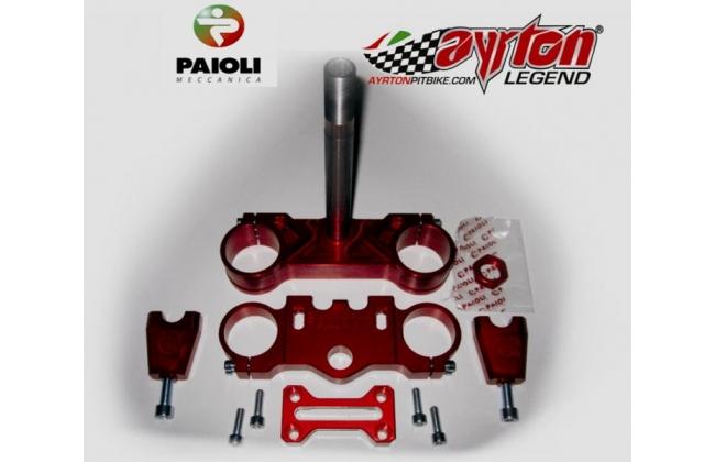 Original Paioli Steering Plates In Ergal Cnc