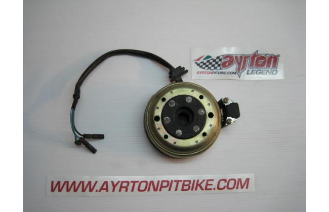High Weight Pitbike Ignition