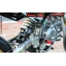 AYRTON PITBIKE  XTREMA ITALY FACTORY SPECIAL 2020 PIT BIKE MOTARD