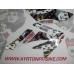 Pit Bike Graphics Ayrton Legend Fighter