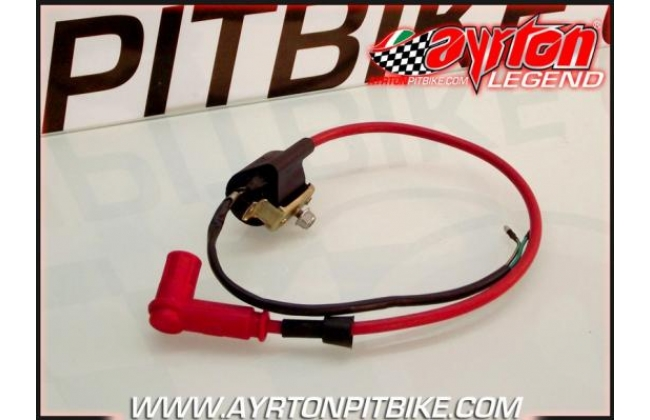 Coil + Red Shielded Spark Plug Cable