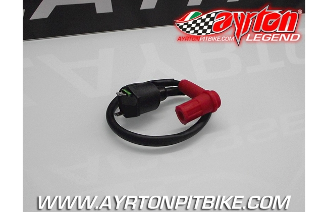 Coil With Black Cable Complete Spark Plug