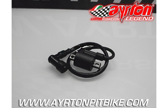 Ignition Coil With Complete Spark Plug Cable