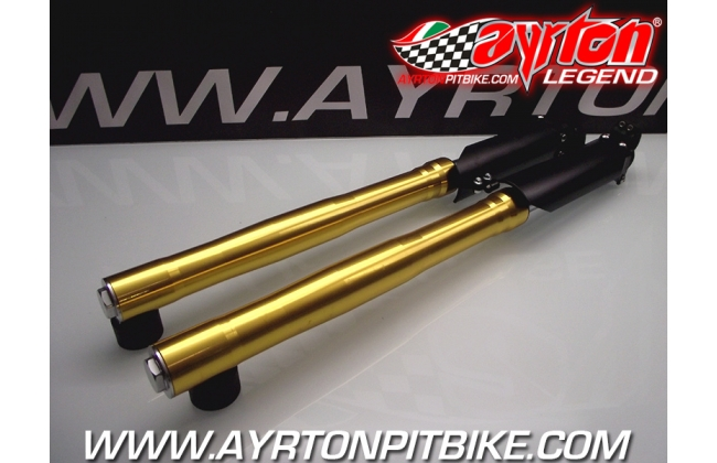 Pit Bike Forks With Gold Inverted Stems