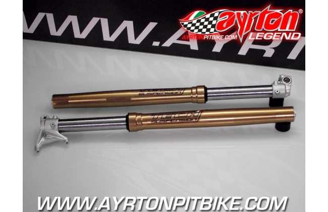Forks Tech Suspension 2019 Radial Adjustable Cross Or Motard. Showcase Display 2 Copies Available