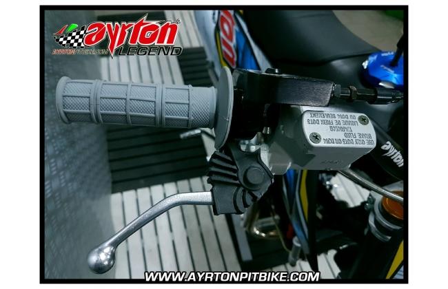 Ayrton Legend Skorpion 160cc